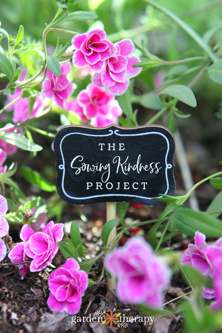 the sowing kindness project