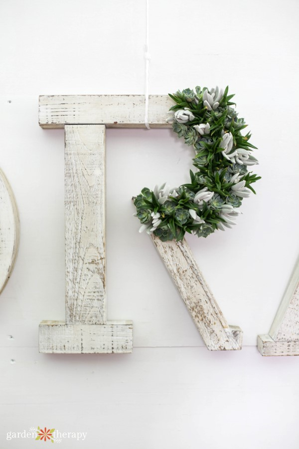 Add succulents to wooden letters