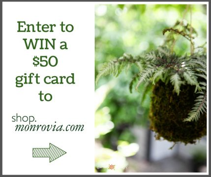 enter to win a $50 gift card from Monrovia