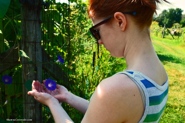engaging with plants boosts mental wellness