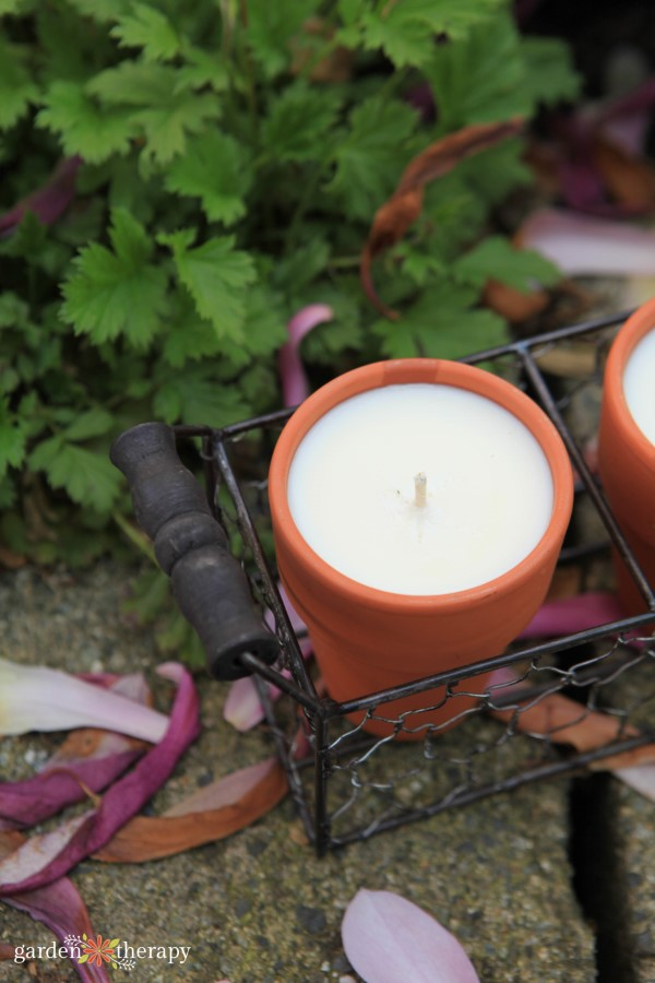 citronella candles to ward off bugs
