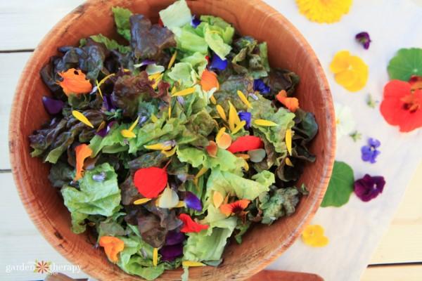 flowerfetti salad