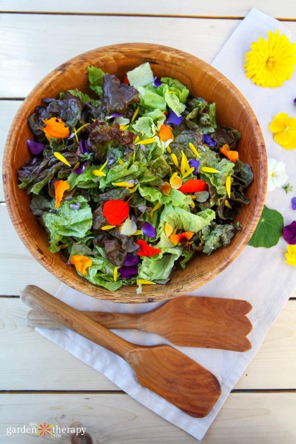 edible flower petals in a summer salad