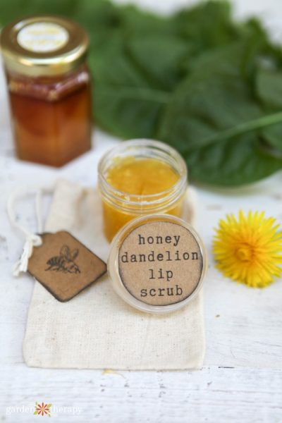 Honey Dandelion Lip Scrub