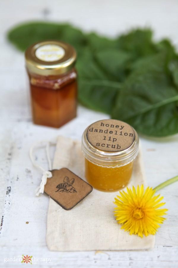 honey dandelion lip scrub recipe