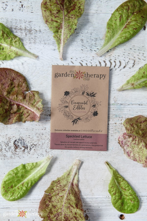 Garden Therapy Seed Collection Speckled Lettuce