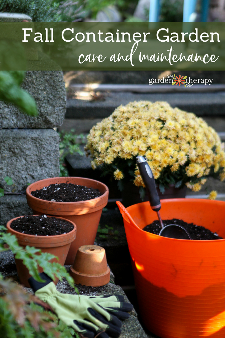 fall container garden care and maintenance
