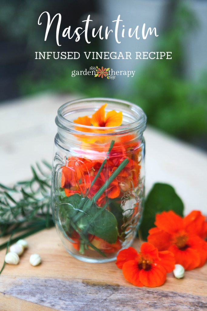 fresh herb and nasturtium infused vinegar