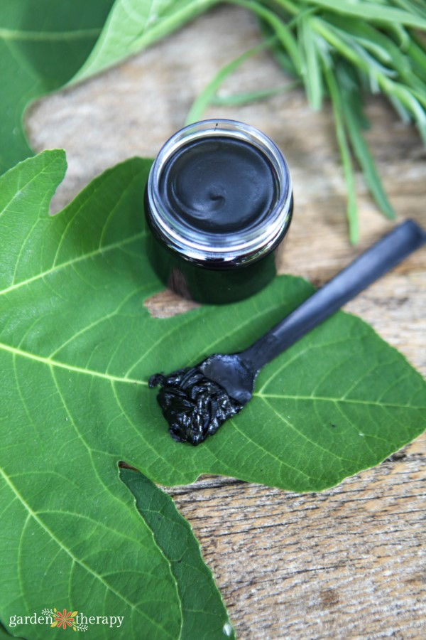 activated charcoal drawing salve on a green leaf