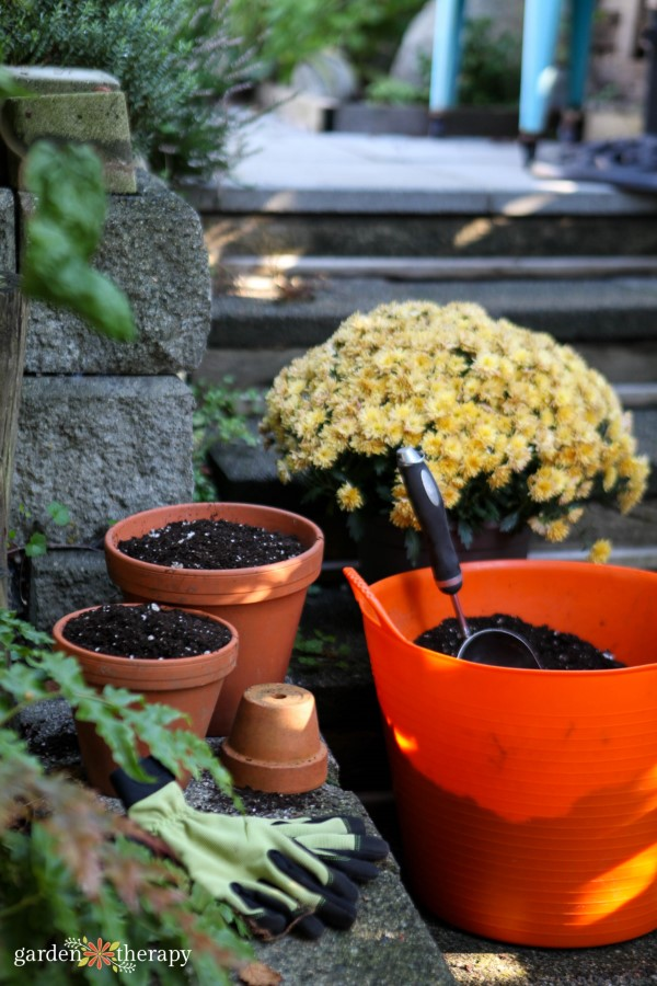 Garden gloves, terracotta pots and a plastic bucket filled with soil placed in front of a yellow mum