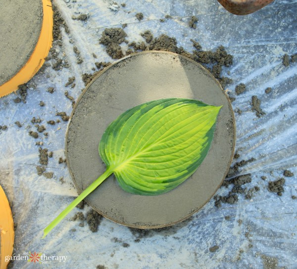 printing a hosta leaf into a stepping stone