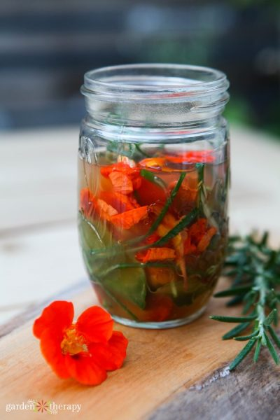 making infused vinegar with rosemary and nasturtium