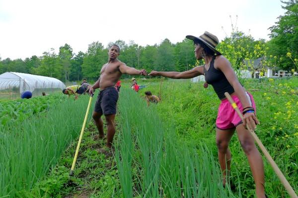 gardeners at Soul Fire Farm