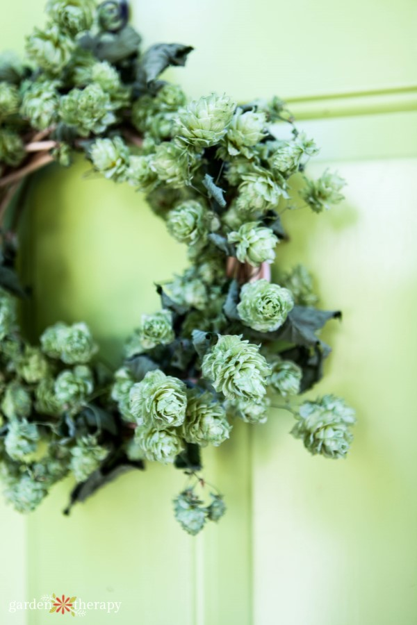 homemade hops wreath