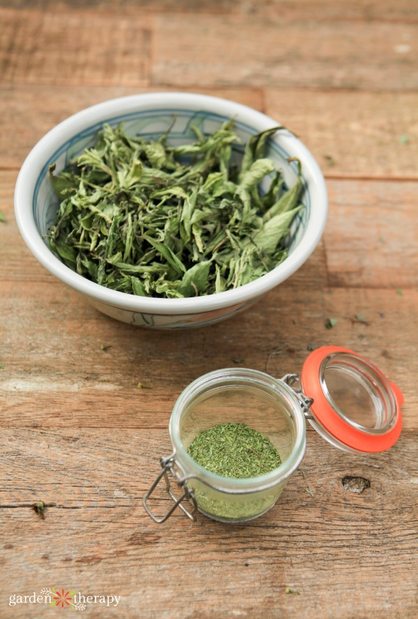 Dried stevia leaves in a bowl and stevia powder in a small container