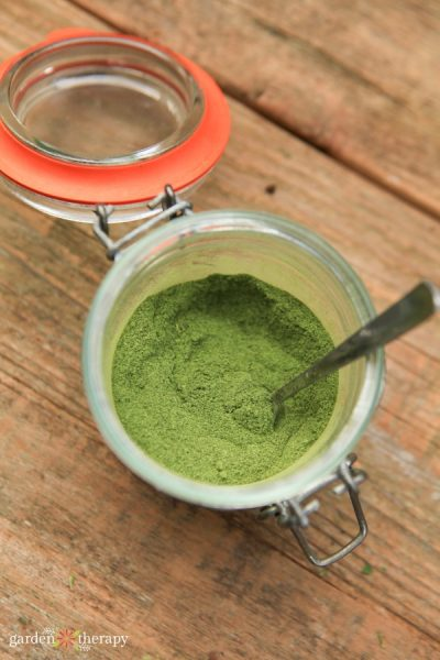 Homemade stevia powder to use as a natural sweetener
