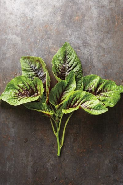 Amazing Amaranth: All About this Leafy Green, Grain, and Superfood