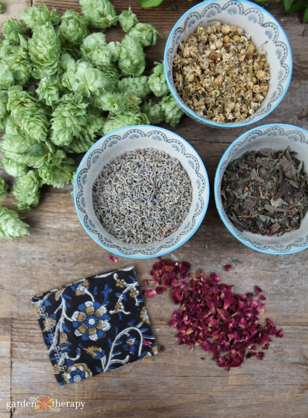 Hops and other dried herbs for making a dream pillow