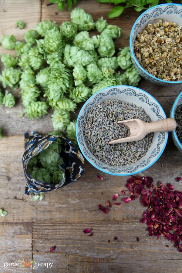 dried hops, lavender, and other herbs for a sleep pillow