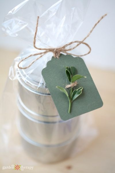 Evergreen Clipping Paper Gift Tag with Twine