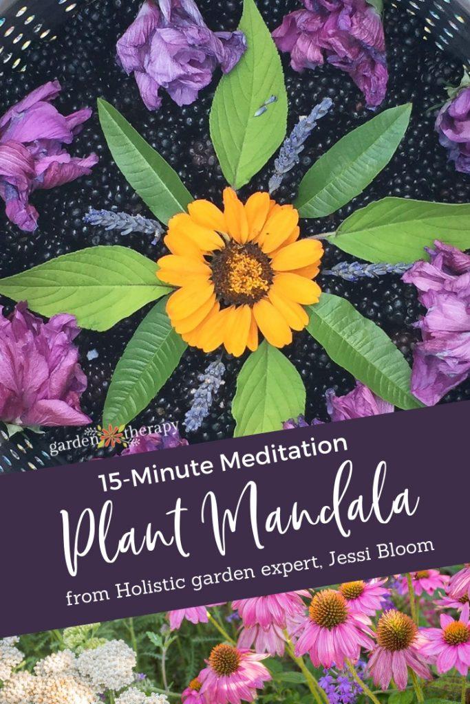 15-Minute Meditation Make a Mandala with Plants
