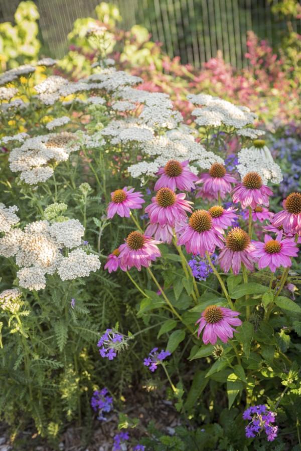 Jessi Bloom Garden