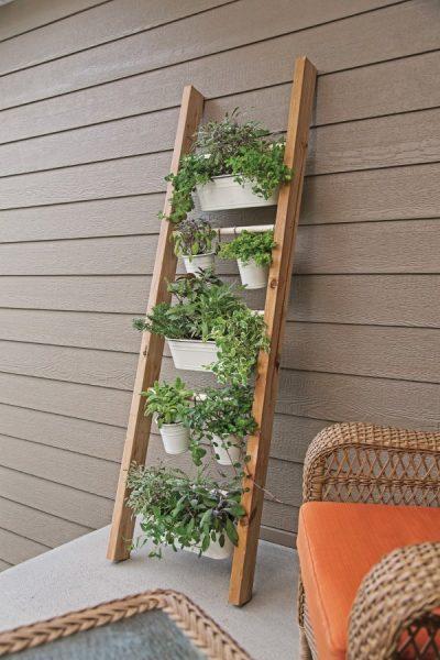 Ladder Planter Vertical Herb garden