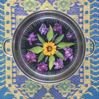 Mandala Meditation Practice with Plants: Creating Sanctuary