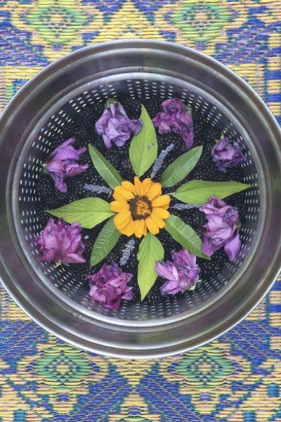 Mandala Meditation with Plants