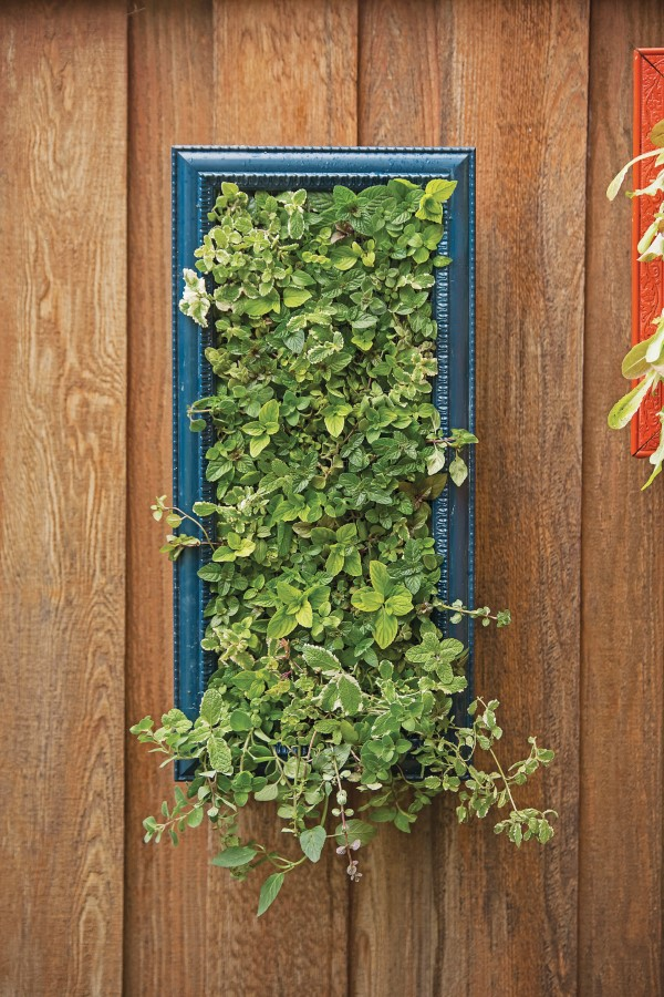 Mint Vertical Herb Garden Wall Art