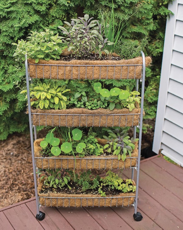 Clever Vertical Herb Gardens That Will Grow A Lot Of Herbs In A