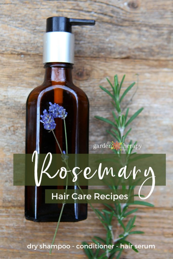 Rosemary Hair Care Recipes