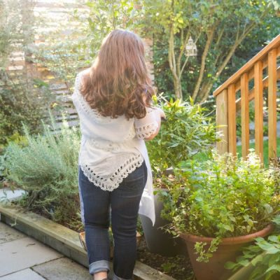 Reaching for Sunlight: Horticultural Therapy + Gardening for Depression