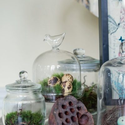 Creating a Moss Terrarium Garden for Gorgeous Green Indoor Decor