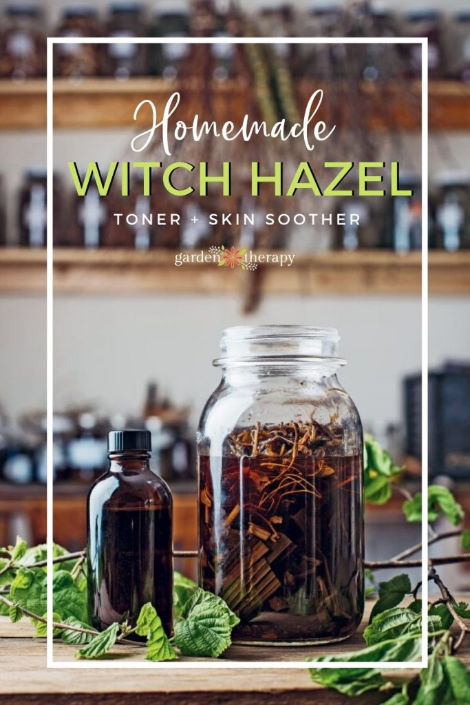 Homemade Witch Hazel Toner + Skin Soother from Scratch
