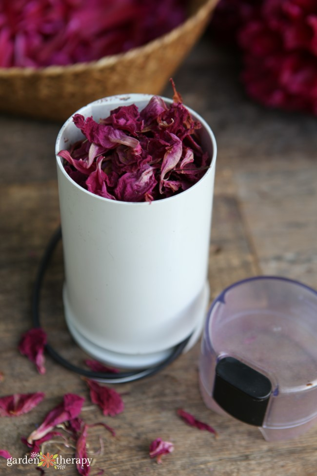 Dried Peony Petals in a Coffee or SpiceGrinder