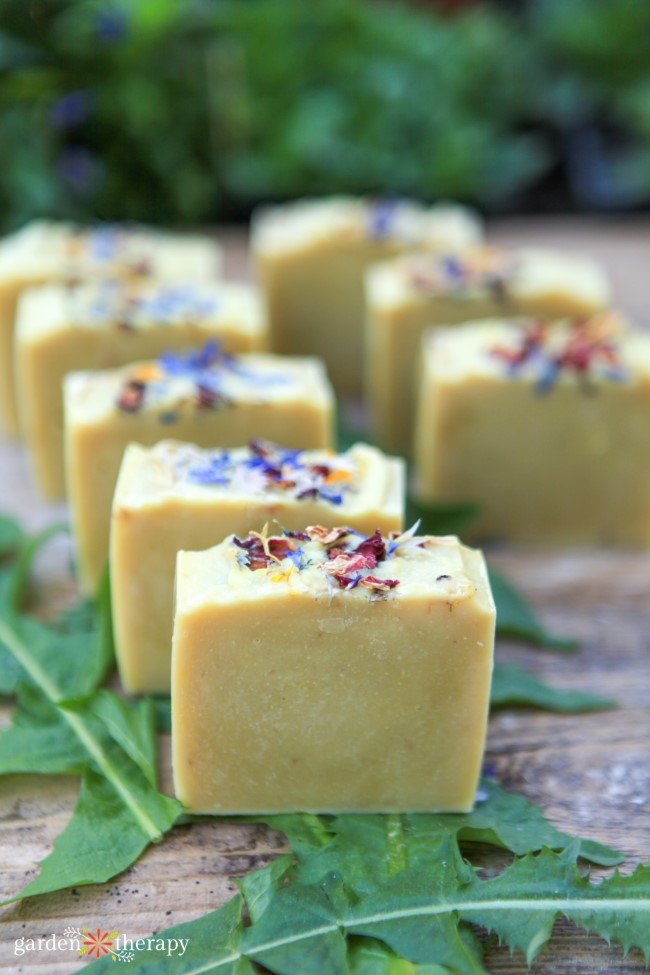 Gorgeous homemade wildflower and dandelion soap