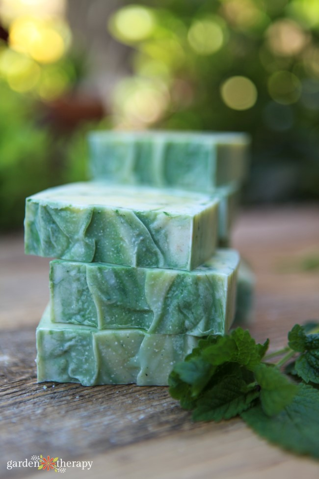 Lemon Balm Cold Process Soap