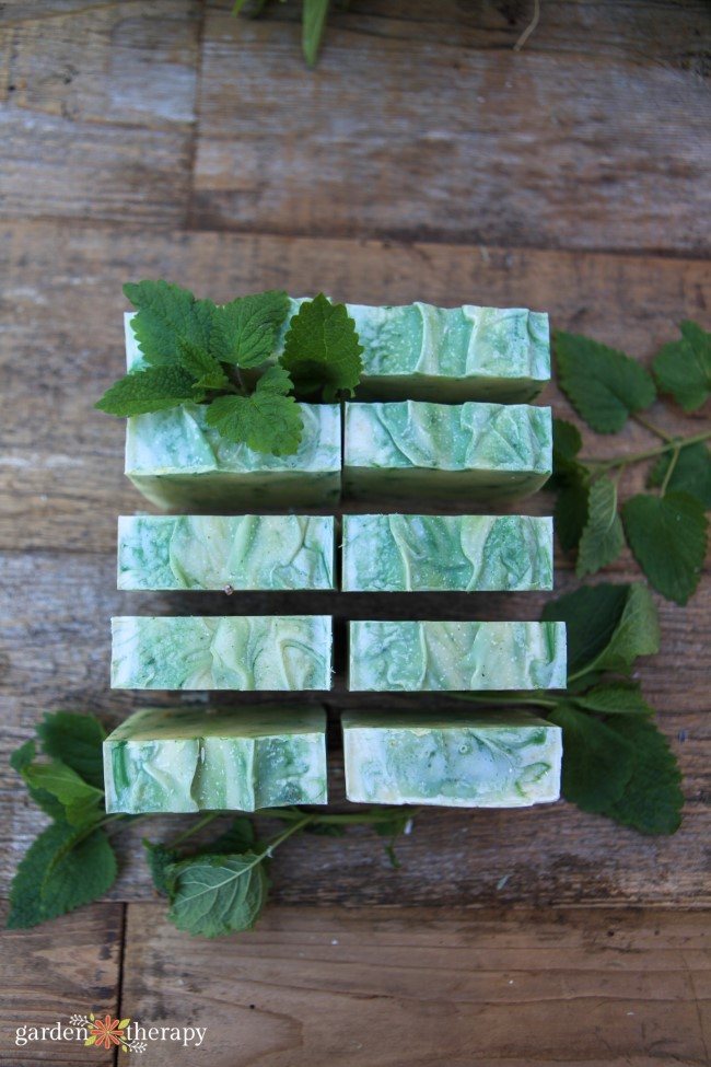 Lemon Balm Soap Recipe