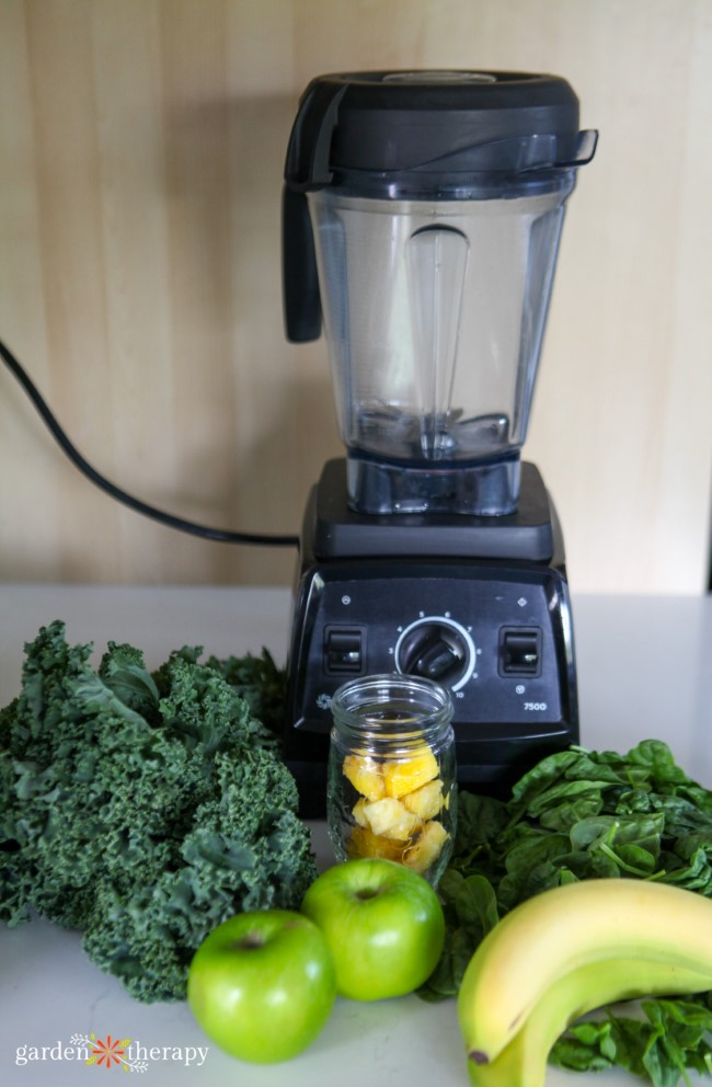 Green Smoothie Ingredients and Vitamix