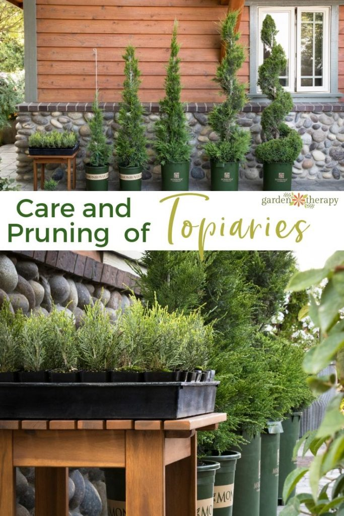 Care and Pruning of Topiaries