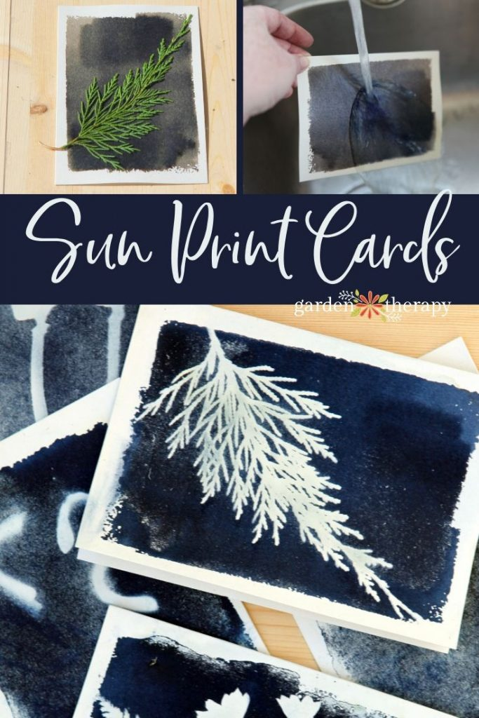How to Make Sun Print Cards