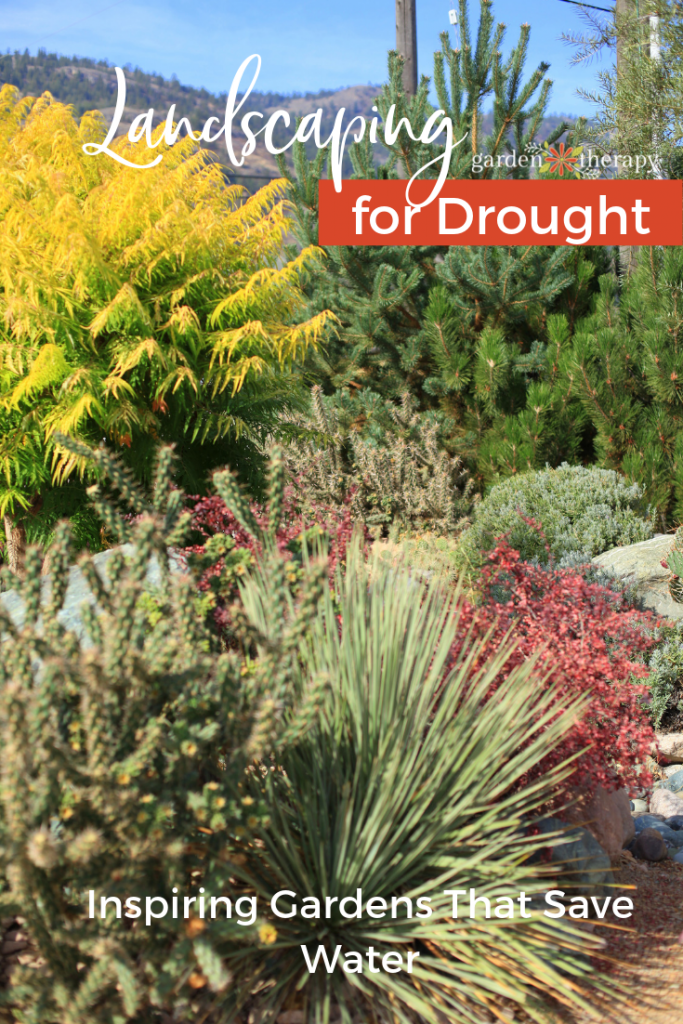 Landscaping for Drought