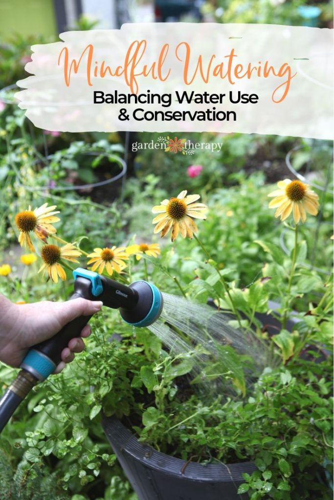 Mindful Garden Watering Balancing Water Use and Conservation