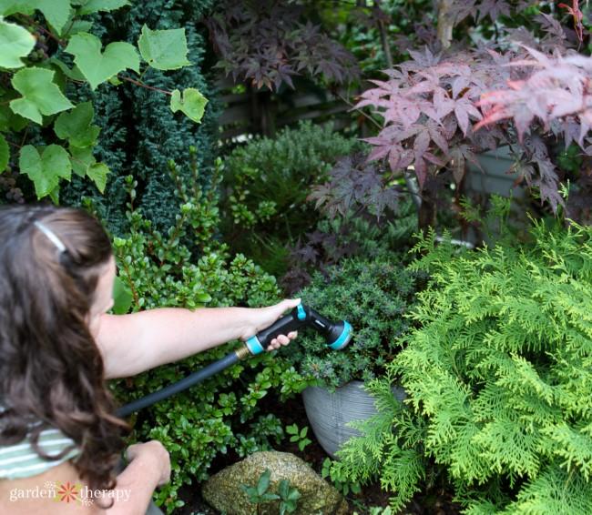 Mindful Garden Watering