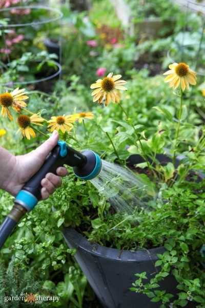 Thumb Control Spray Nozzel watering containers