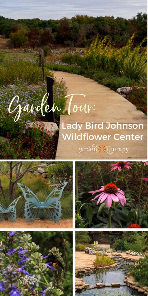Garden Tour Lady Bird Johnson Wildflower Center