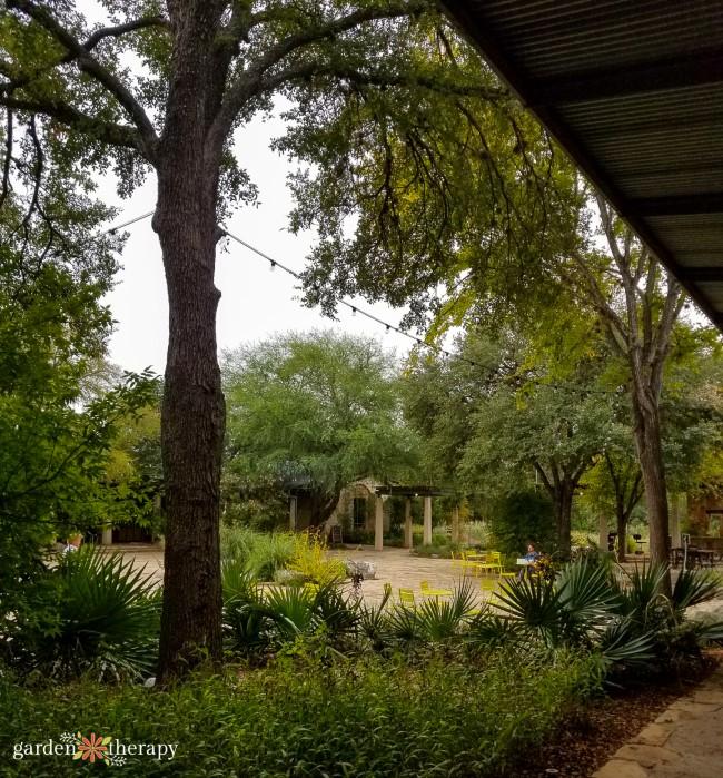LBJ Wildflower Center Central Courtyard