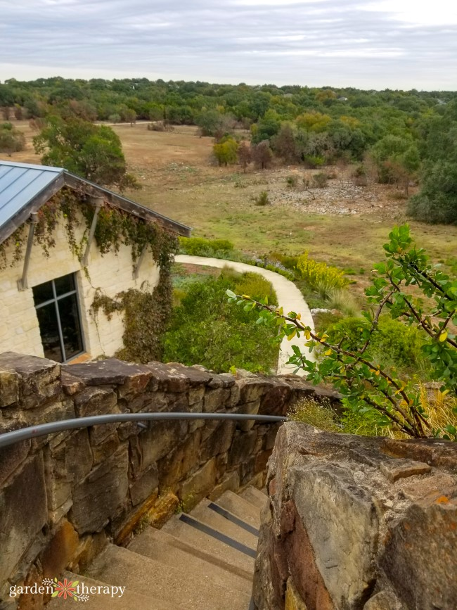 Looking down the stairs of the Lady Bird Johnson Wildflower Center