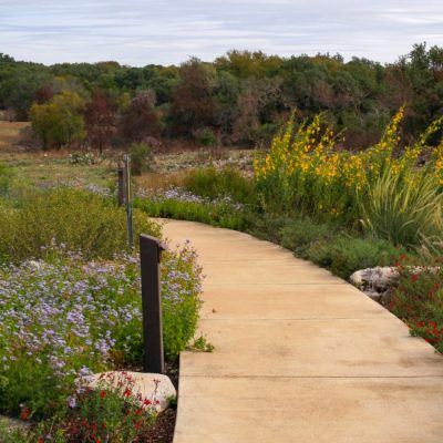 Garden Tour: The Lady Bird Johnson Wildflower Center